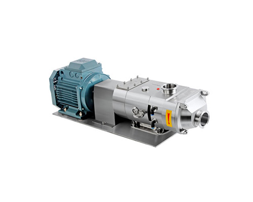 Twin screw pump with motor directly